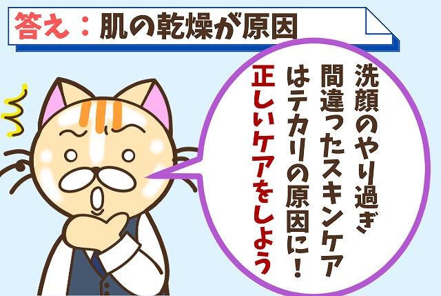 【質問⑯】おでこや鼻がテカる原因は?