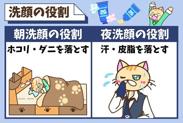 朝と夜の洗顔の役割