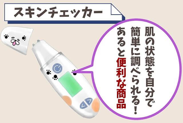【調べ方①】スキンチェッカーを使う